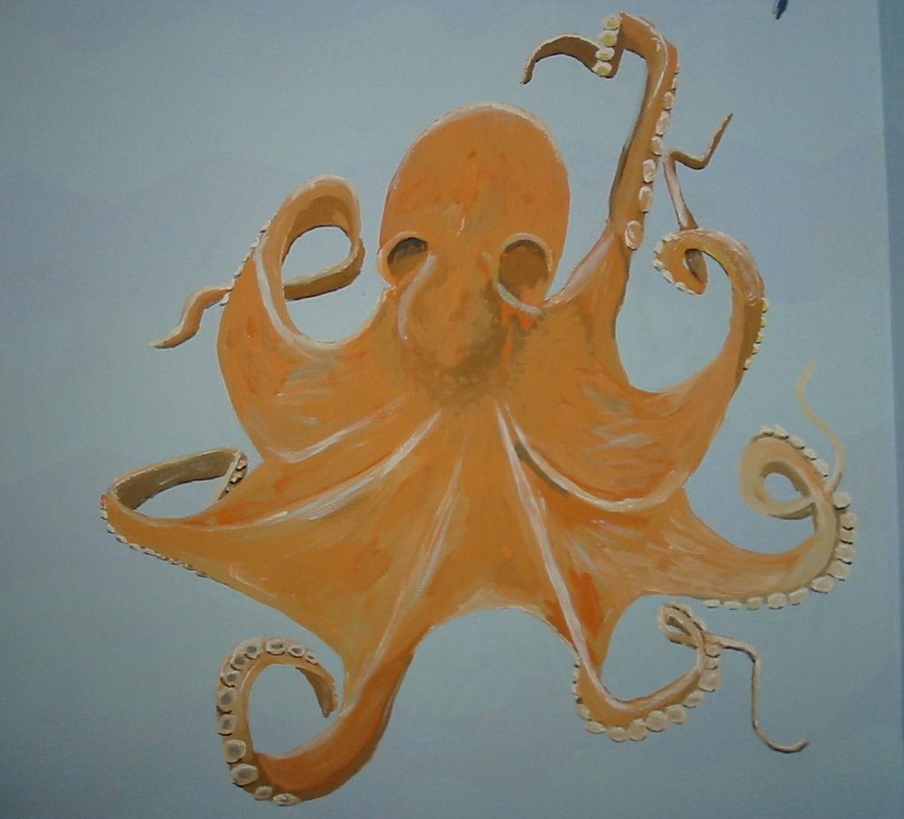 Octopus adjusted