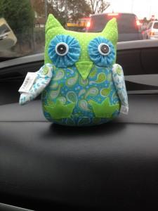Ageist owl